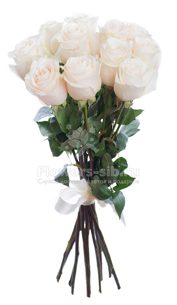 BOUQUET OF 11 ROSES at the price 1350 - efficient delivery of ...