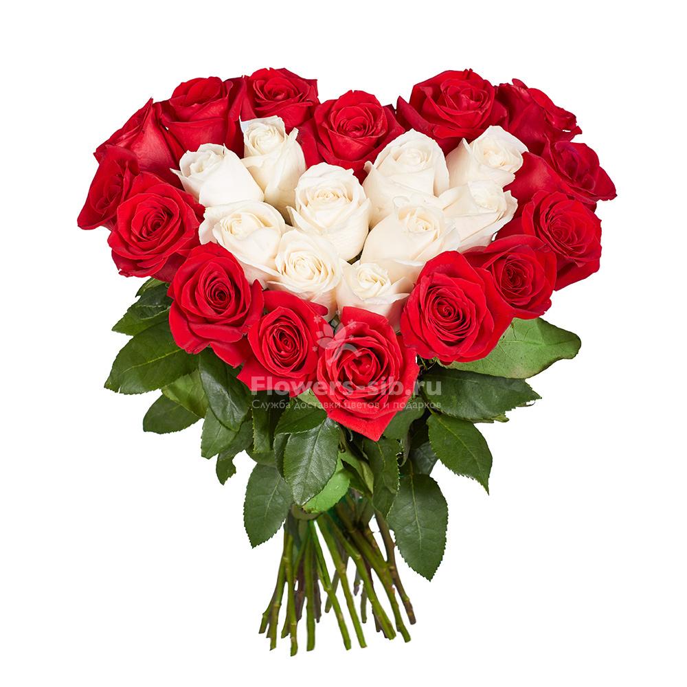 Сколько стоит 1 роза в москве