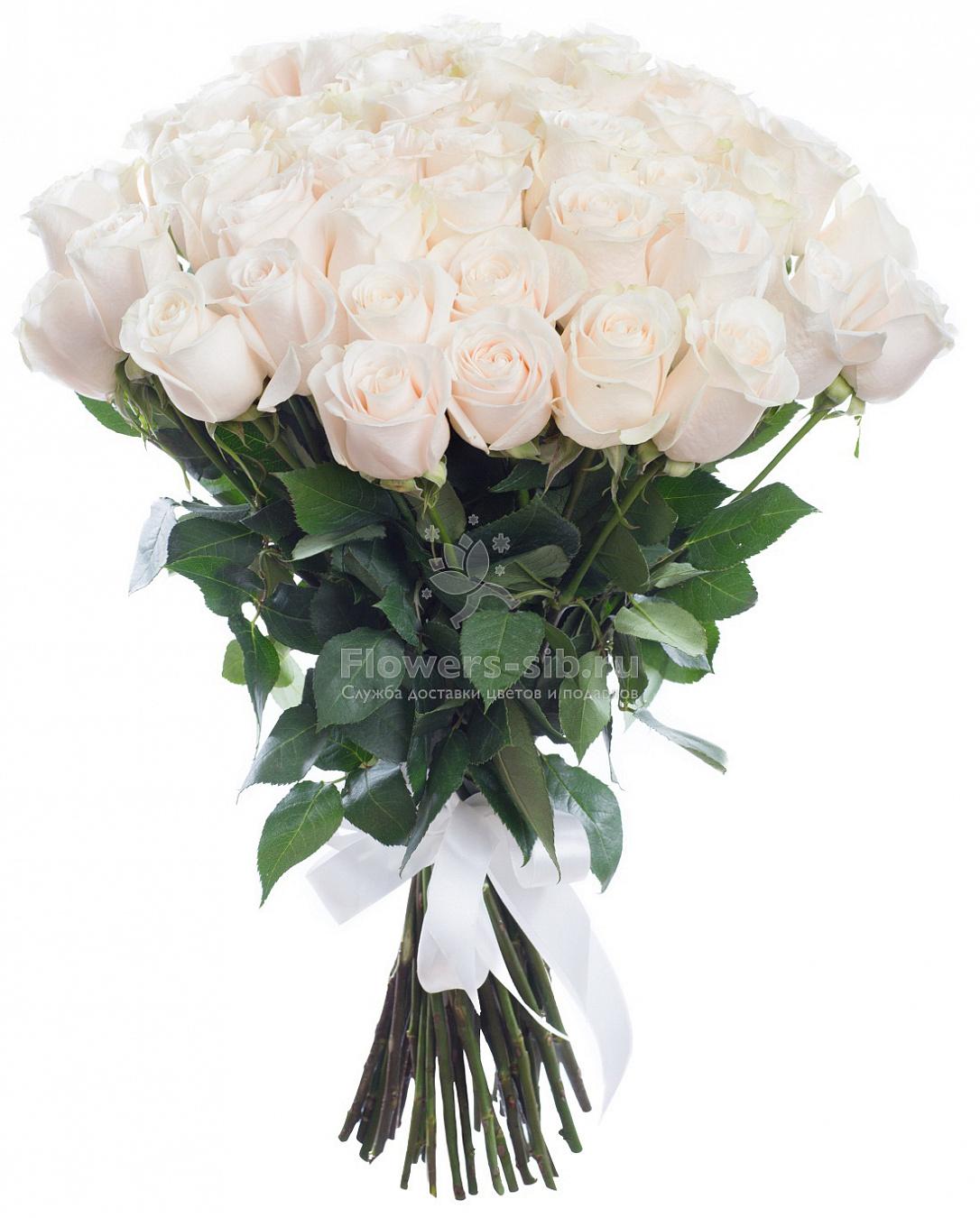 Где купить доставка цветов калининград цены букеты цветов